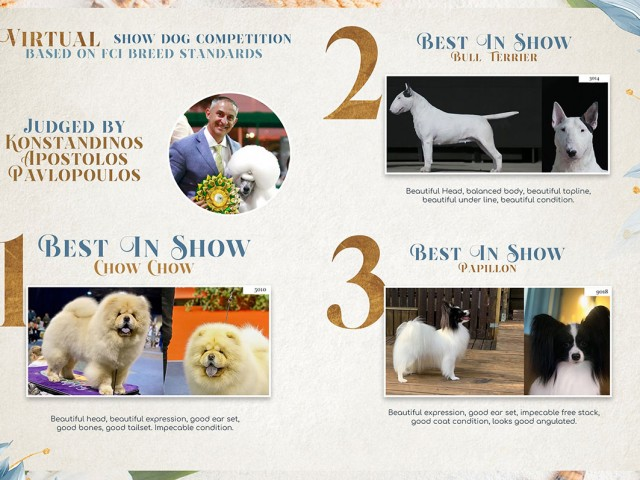 results: Brisa: #1 of Group and #2 Best In Show